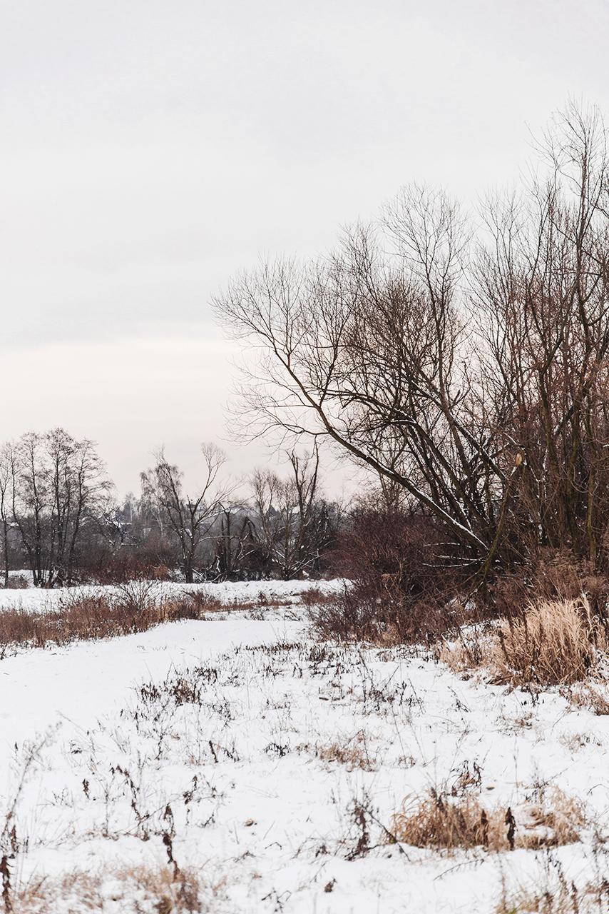 prosty i rozleniwiony zimowy brunch 09