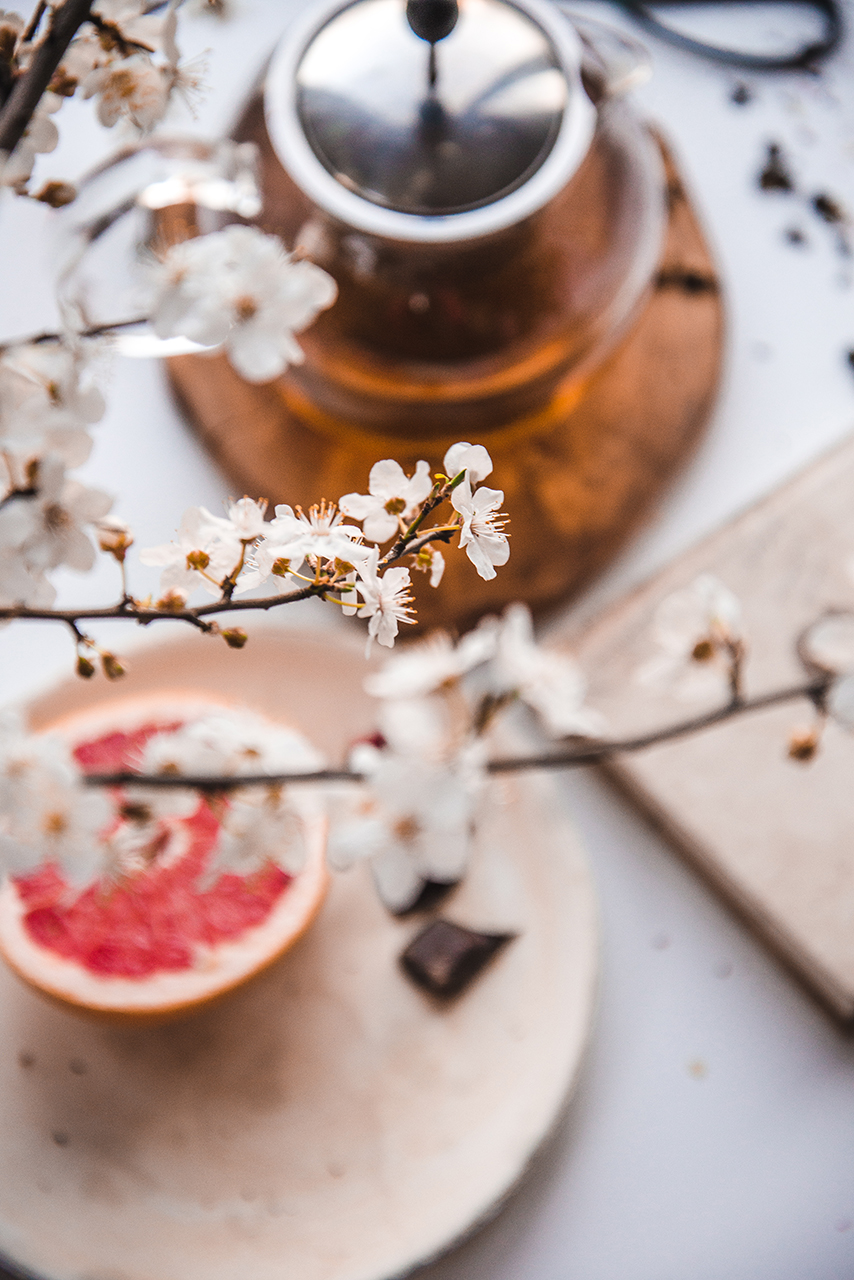 Kwitnące gałęzie w lutym, czyli domowe pędzenie kwitnących drzew i krzaków 06
