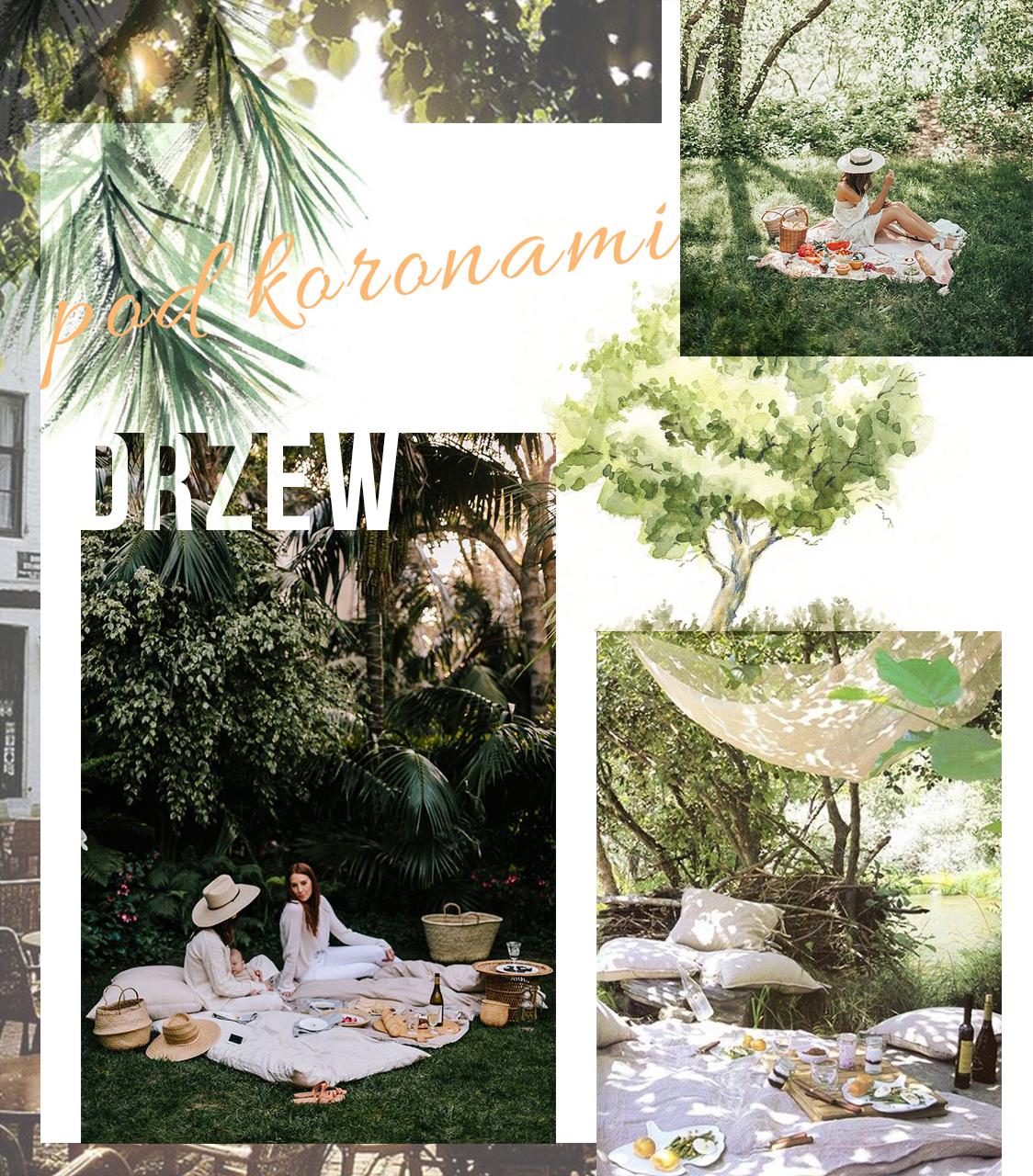 Wizualny piknikowy poradnik   Piknik pod drzewami