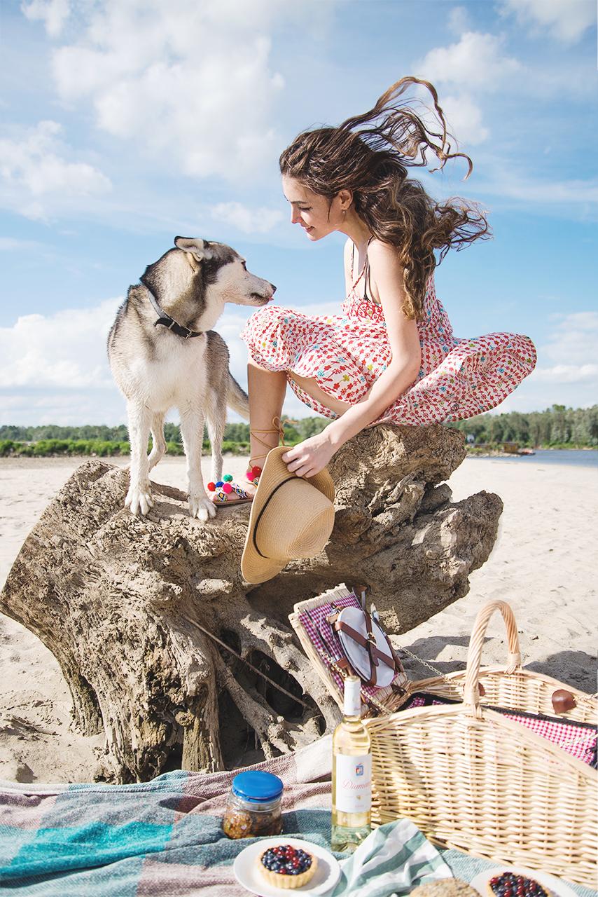 Wizualny piknikowy poradnik   Piknik na plaże