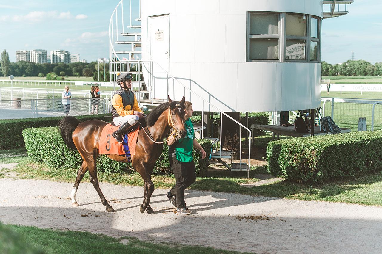 Wyścigi konne – miejsce gdzie sport i moda galopują w jednym tempie 13