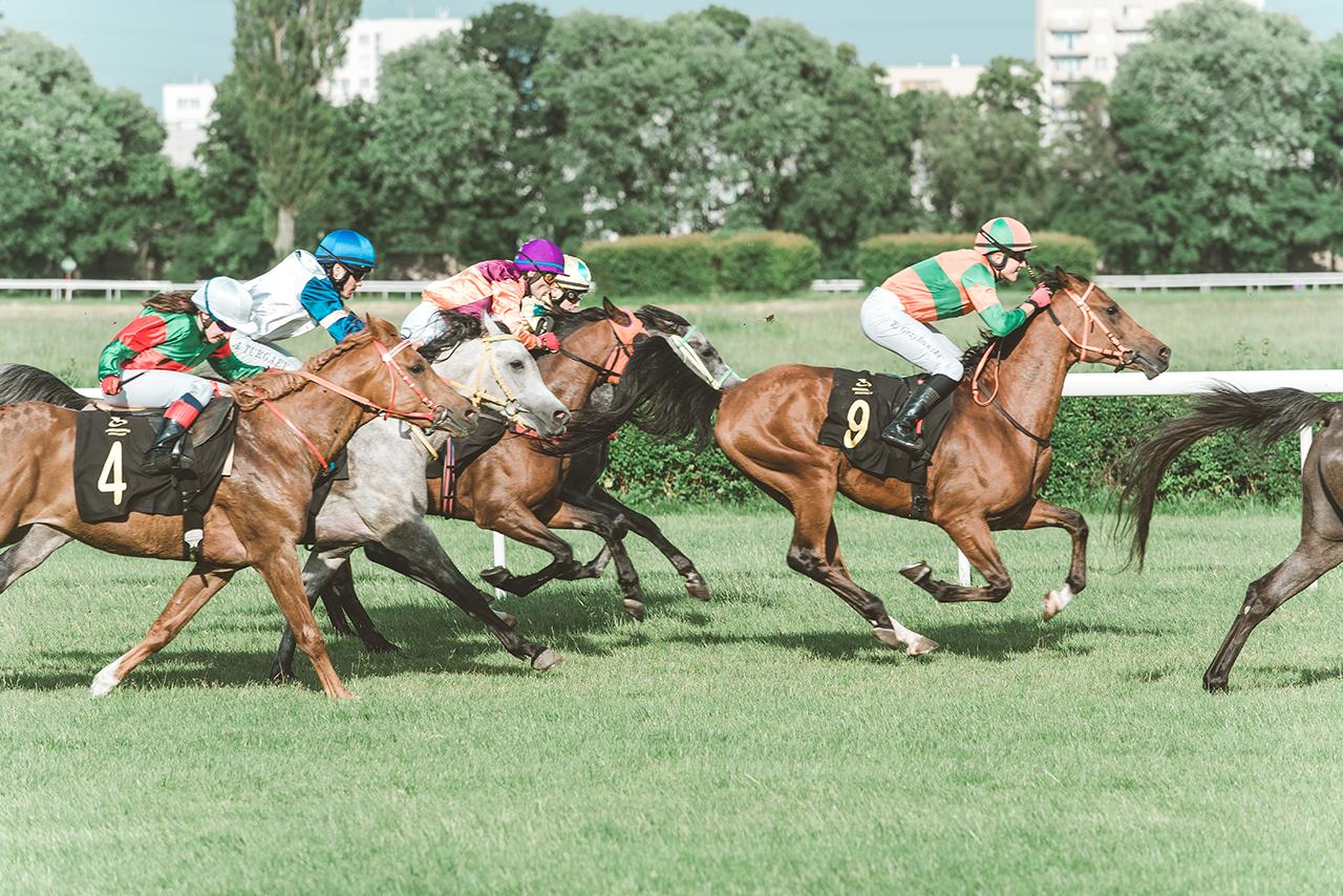 Wyścigi konne – miejsce gdzie sport i moda galopują w jednym tempie 17